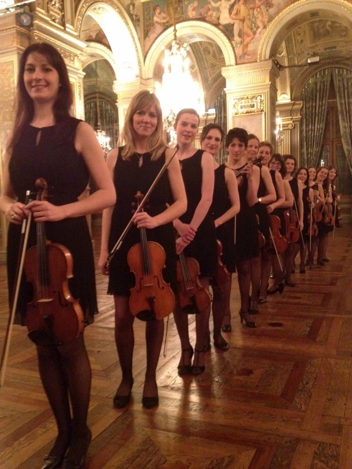 Ensemble de 12 violons pour une soirée